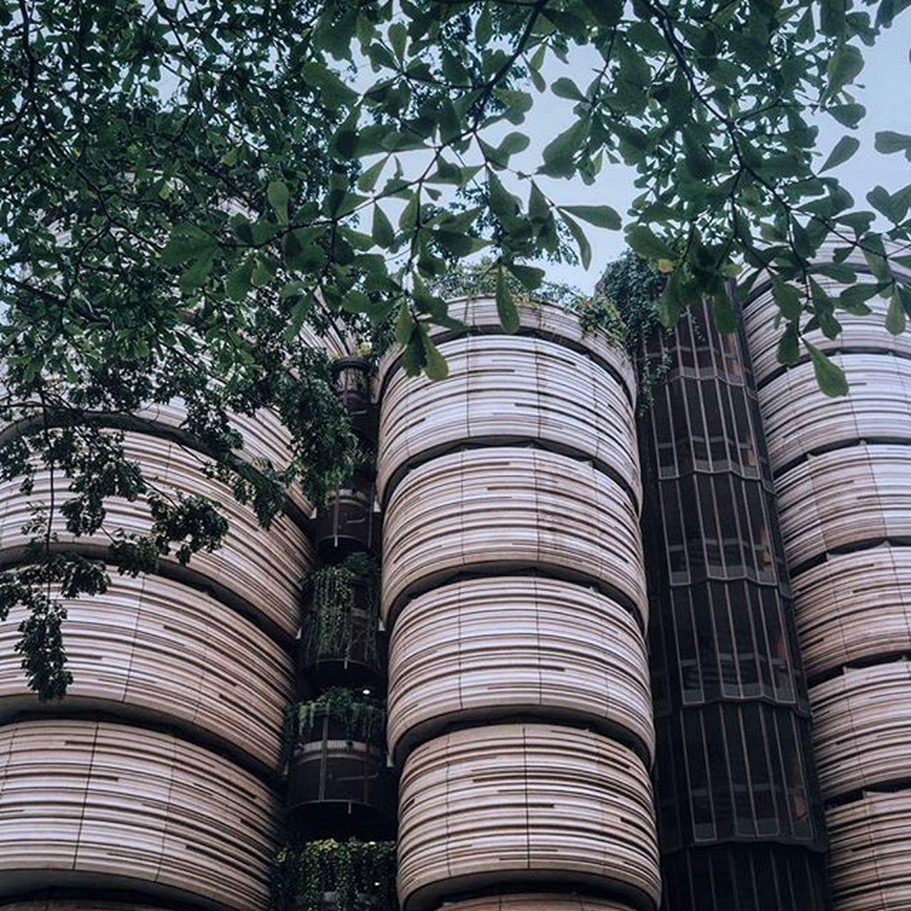 dim sum-like building 💓 Nunnawanderlust