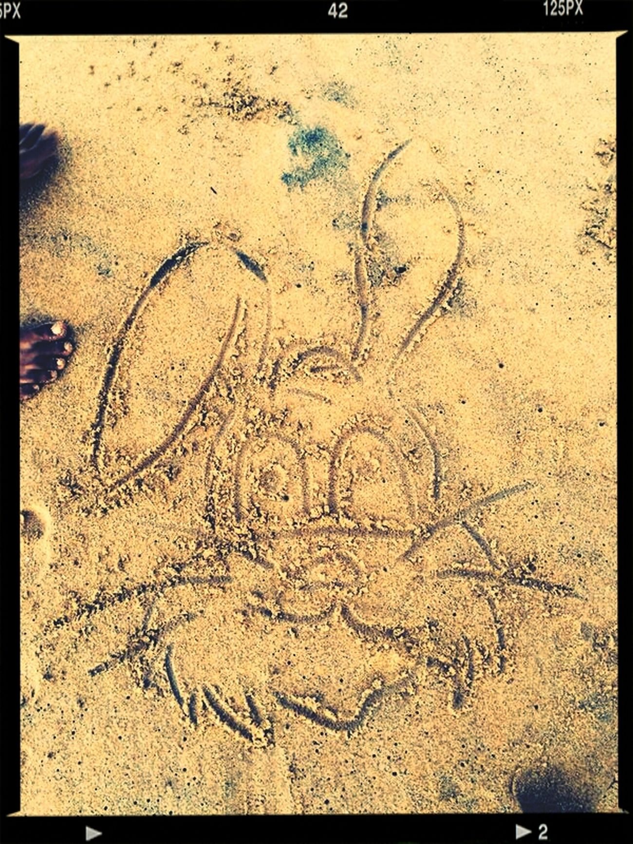 Beach Art Mr Rabbit Sand Drawing Keep Calm And Hakuna Matata juz the scribbles of my crazy mind