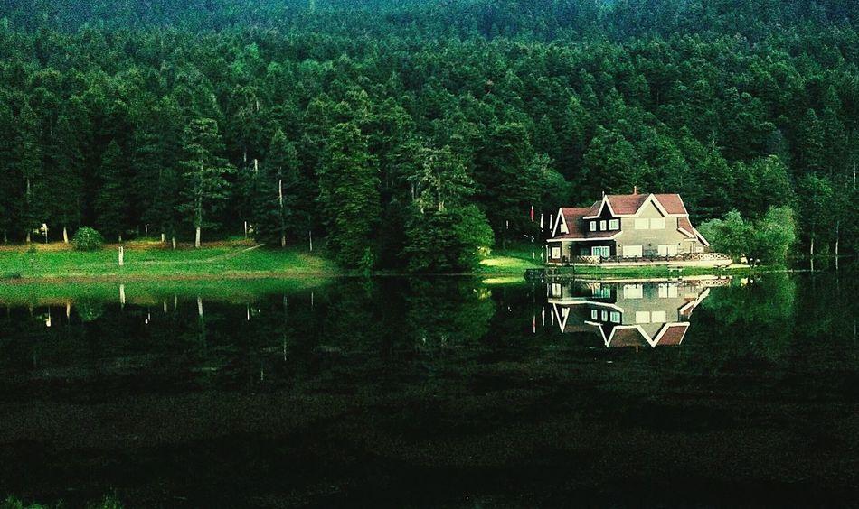 The Great Outdoors - 2016 EyeEm Awards EyeEm Best Shots Green Lake Bolu Golcuk Photography