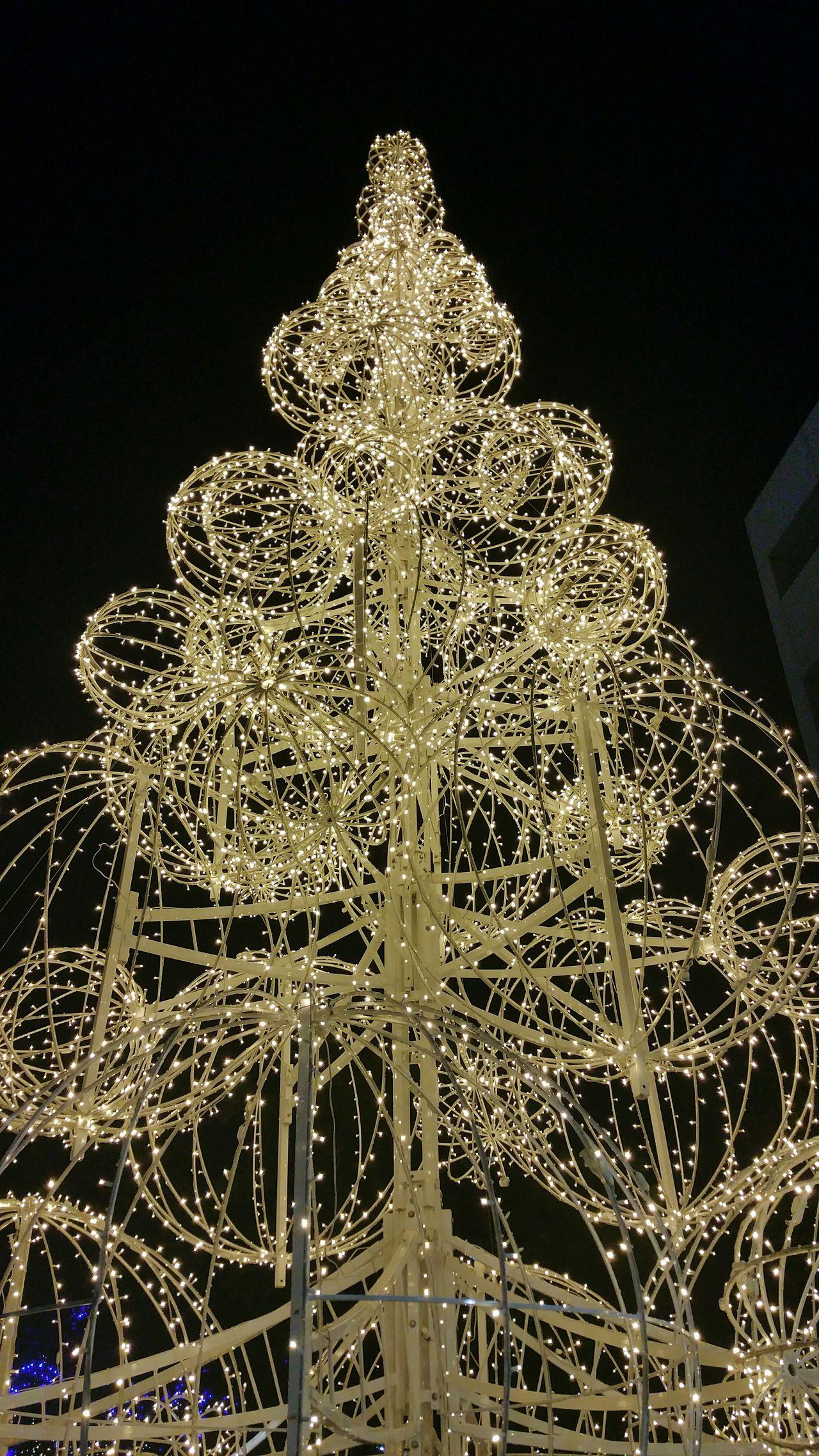 Riverside California Riverside Downtown Riverside Christmas Tree Christmas Lights Christmas Decorations Christmas Time Southern California Riverside County