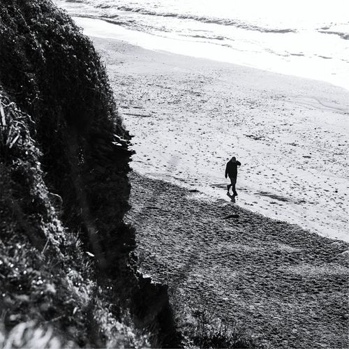 Beach Beachphotography Beach Life Life Is A Beach On The Beach Beach Time Cold Days Coastline Coast Cornwall Cornwall Walks Polhawn Fort Plymouth Seaside Seaside_collection Morning Morning Walk Early Morning Walk... Image 31 Photography Blackandwhite Bnw Bnw_life Bnw_collection