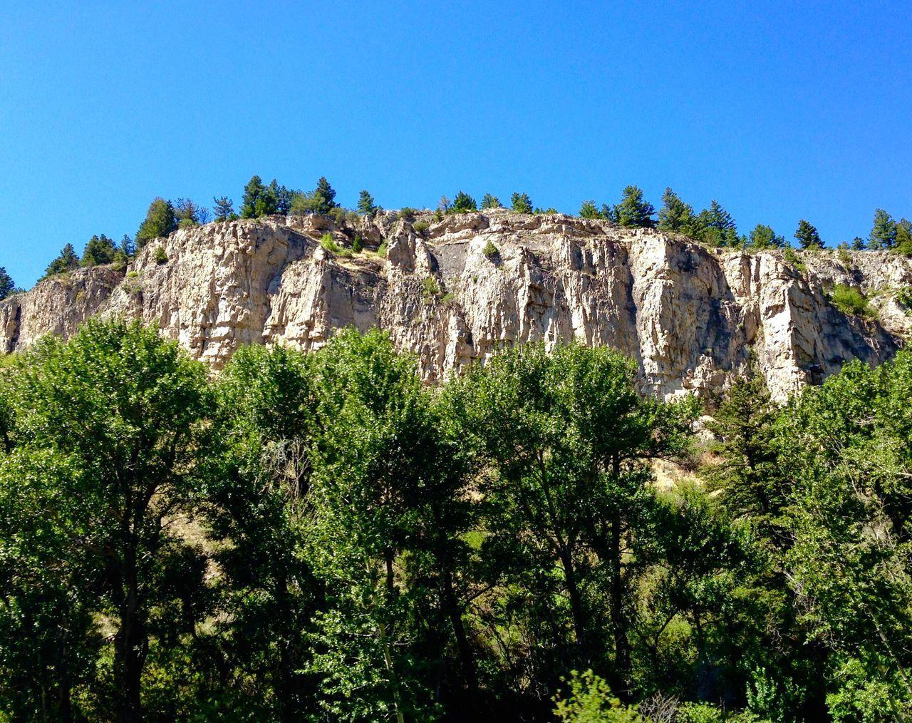 Scenic rocks Scenic Rocks Scenic Drive Road Trip Trees Travel Outdoors Sky Montana