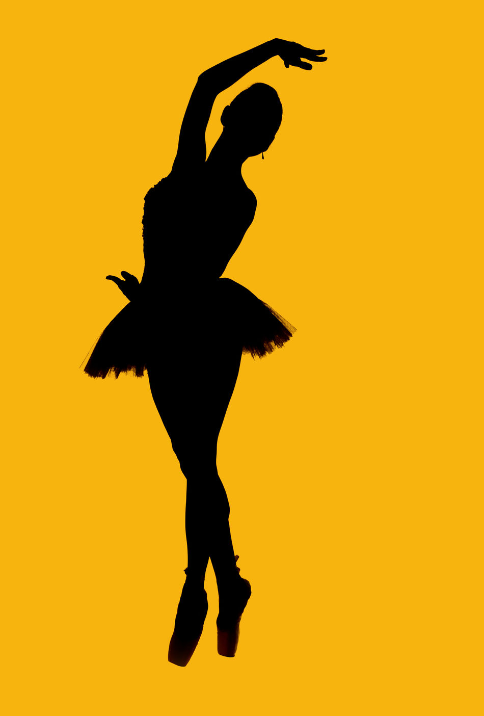 Black silhouette of ballerina isolated over yellow background Art Artist Balance Ballerina Ballet Ballet Dancer Ballet Shoes Ballet Tutu Black Silhouette Bodice Choreography Cut Out Dancer Elegant Graceful Isolated Outline People Pointe Shoes Pose Prima Silhouette Slim Woman Yellow Background