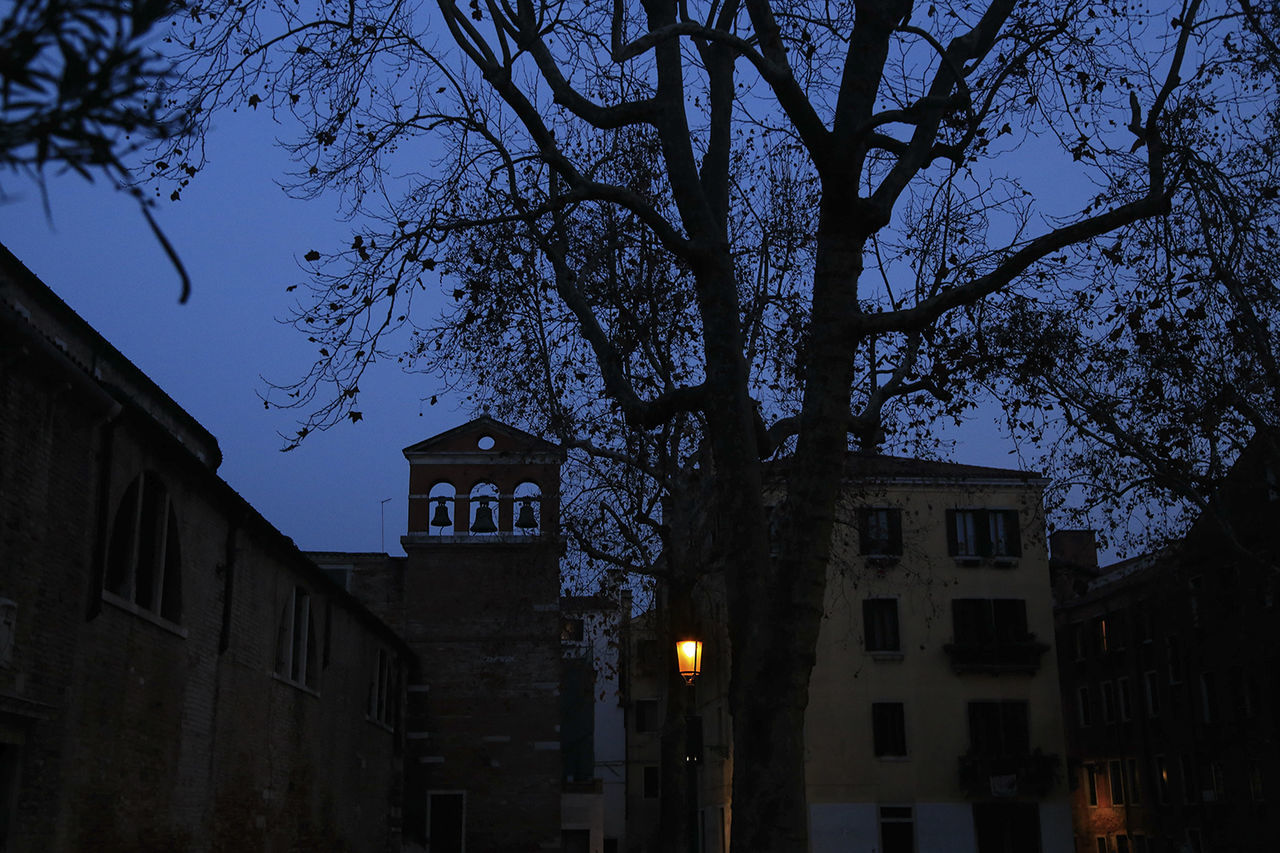 Tree Night Sky Architecture Venice, Italy Cityscape Nightview Observecollective