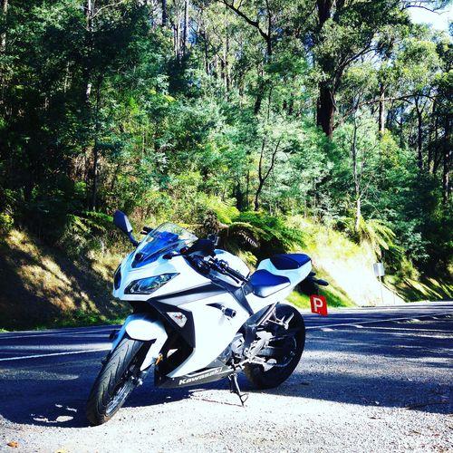 Black Spur Black Spur Motorcycles Ninja300 Australia