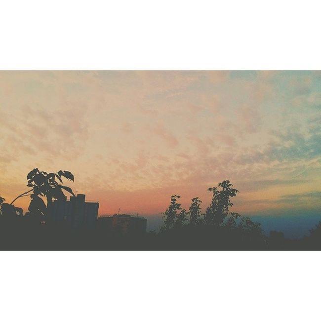The sky is on fire // VSCO Vscocam Hypebeast  Hypebeastxvsco