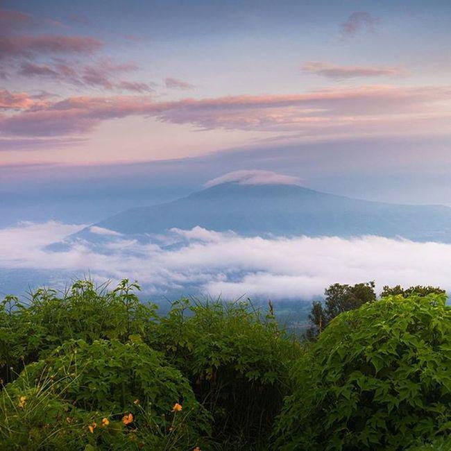 """อีกสถานที่ที่ทำให้ หลงรัก""""เลย"""" Lumixgx8 Thetrippacker Thailand Loves_siam Reviewesan Reviewthailand Loei Love_natura Bestshot Lumixnz"""