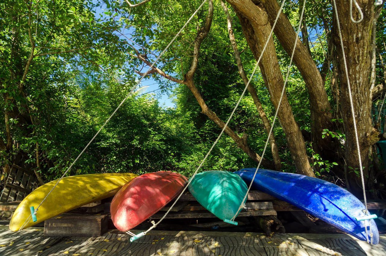 Four colorful kayaks in San Andres y Providencia, Colombia Canoe Canoes Caribbean Coast Coastline Colombia Colorful Holiday Idyllic Island Kayak Kayaks Nature Outdoors Palm Providencia SanAndres Town Traditional Travel Tree Tropic Tropical Vacation Village