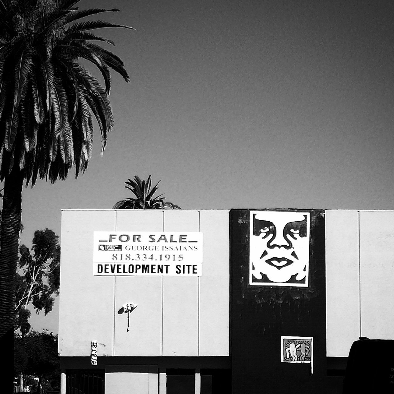 Andre The Giant Los Angeles, California OBEY Obeygiant Palm Tree Street Art