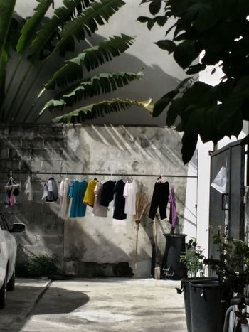 Hanging laundry in the city of Bangkok. Hanging Clothesline Drying Window Laundry Washing Tree Indoors  Domestic Life Architecture No People Day Details Worldtravel Travel Photography Photooftheday Building Exterior Thailand Travel Photography Vacations Bangkok City Streetphoto