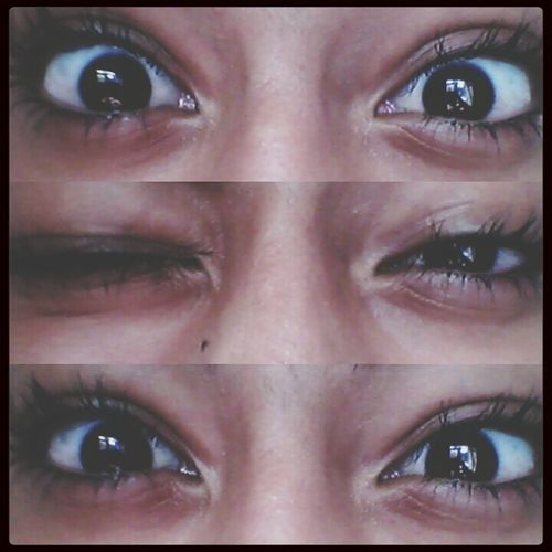 Castanhos ?❤