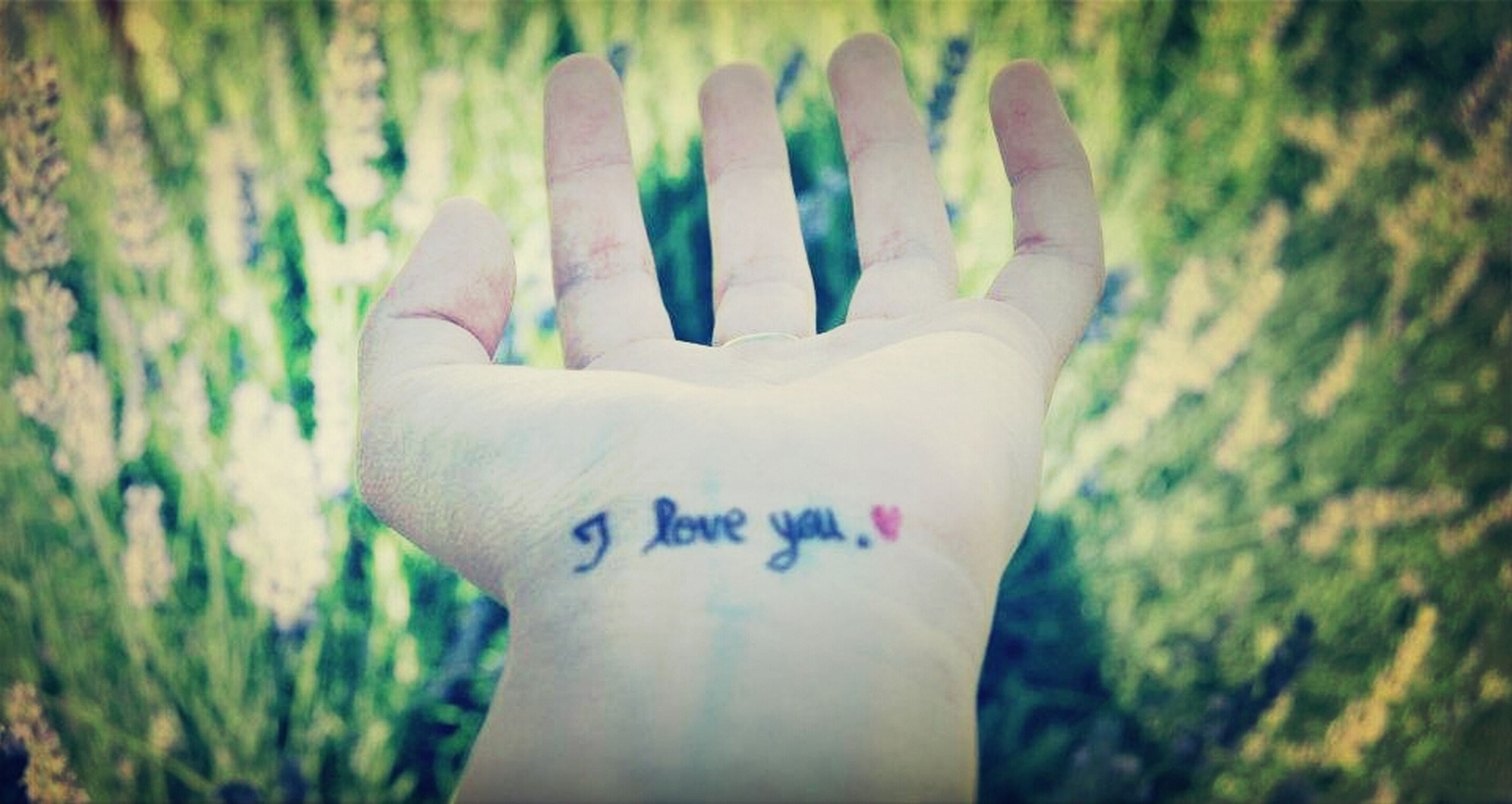 text, person, close-up, western script, focus on foreground, part of, creativity, cropped, communication, art, art and craft, human finger, selective focus, heart shape, day, white color, holding