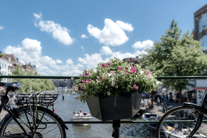 Basket Of Flowers 🌷 Bicycles Blue Sky Boat Flowers Leiden River Summer Day
