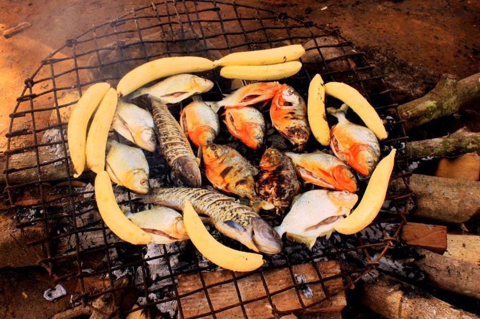 Beautiful stock photos of fish, Barbecue, Barbecue Grill, Close-Up, Day