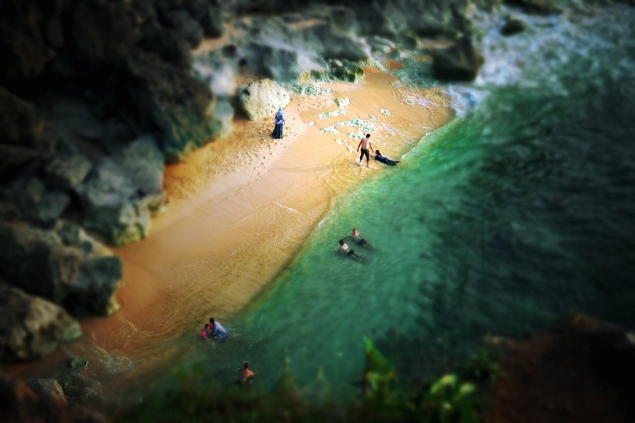 high angle view, nature, day, outdoors, water, animal themes, beauty in nature, animals in the wild, real people, tilt-shift