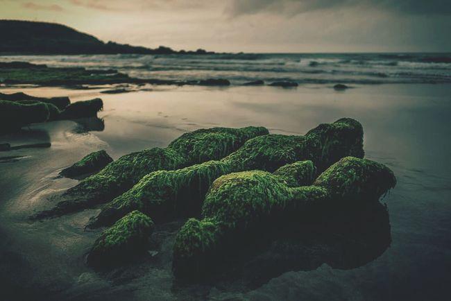 Stone Sea Seaside 老梅 老梅石槽 Vscocam Taiwan 台灣 The Great Outdoors - 2015 EyeEm Awards