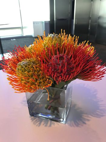 Flower Fragility Beauty In Nature Indoors  Petal No People Flower Head Nature Vase Freshness Red Table Bouquet Close-up Day Plant Growth Orange Color Botany Bloomberg Building