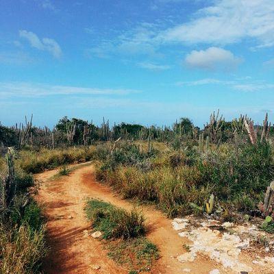 """Cuando tome esta foto pensé en la canción de Fito Páez """"Al lado del camino""""... Macanao IslaDeMargarita Venezuela Vscocam Adventureseries January"""