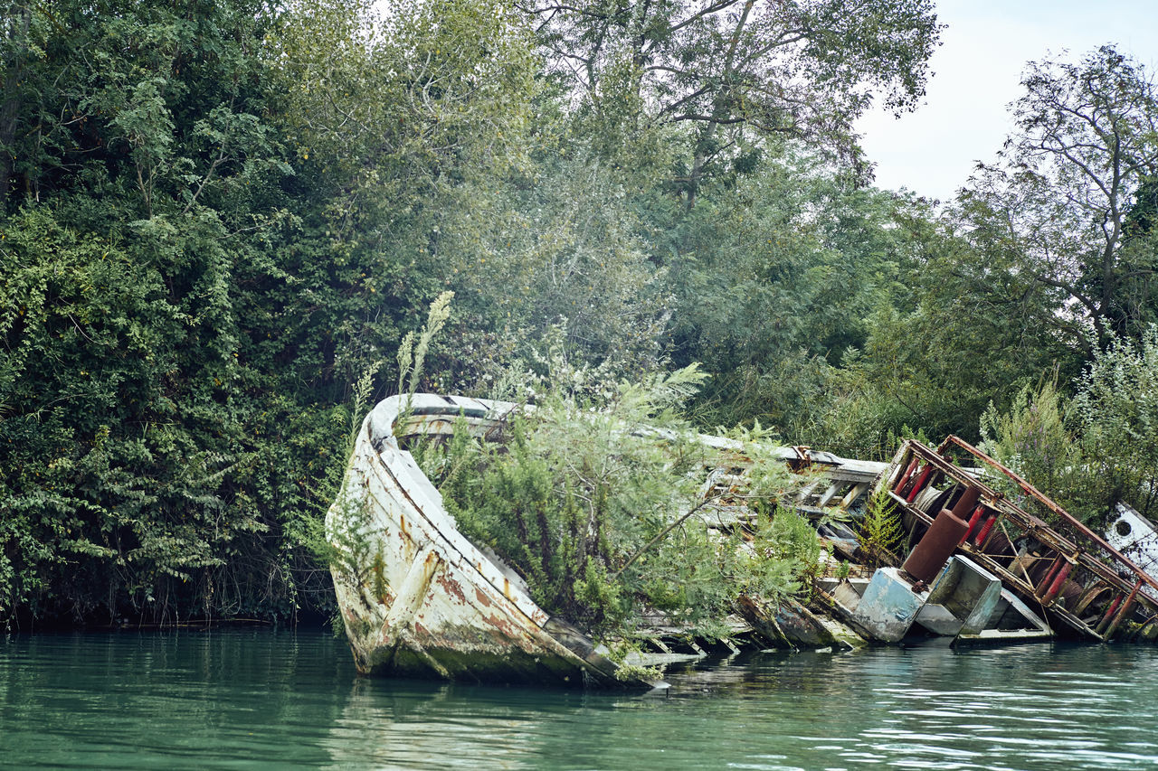 50mm Abandoned Boat Cemetery Craft Death Deterioration Fiumicino Forgotten Isola Sacra Leica River Roma Sony A7RII Summicron Sunk Tevere Vacations Vassel Young Adult
