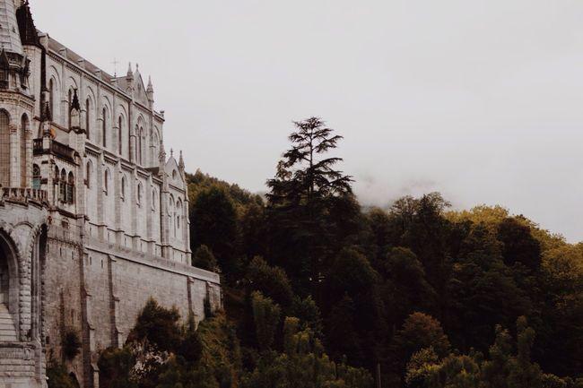 landscape Landscape Photography Trees Escaping Hope Pry Lourdes France