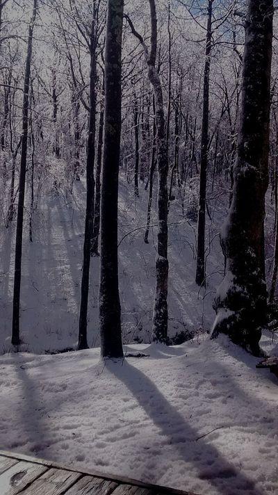 Low Gap Shelter After The Snowfall Enjoying Life