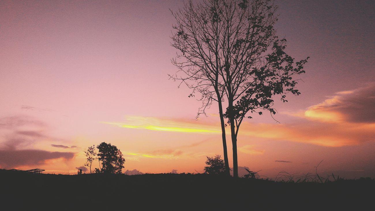 Landscape_Collection Landscape Shillouette Popular Borneohunter_bnw Borneophoto_hunter