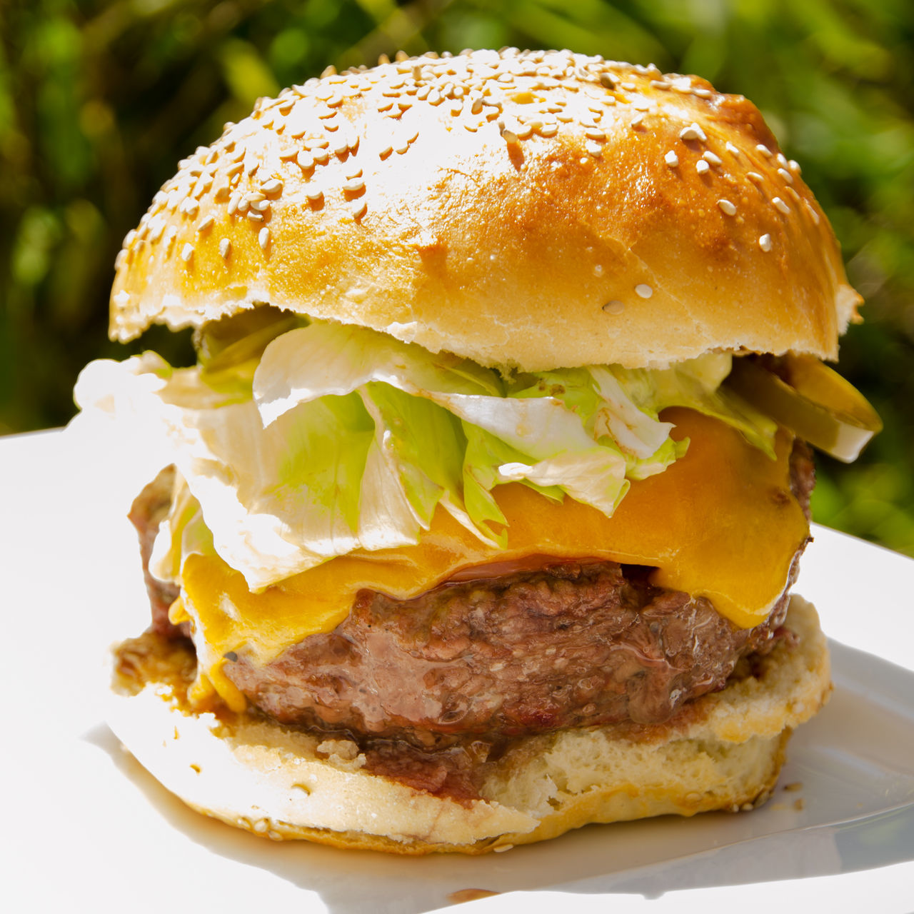selfmade burger Beef Bread Bun Burger Cheese CheeseBurger Close-up Day Fast Food Focus On Foreground Food Food And Drink Freshness Hamburger Indoors  Lettuce Meat No People Plate Ready-to-eat Selfmade Selfmade Food Sesame Unhealthy Eating Vegetable