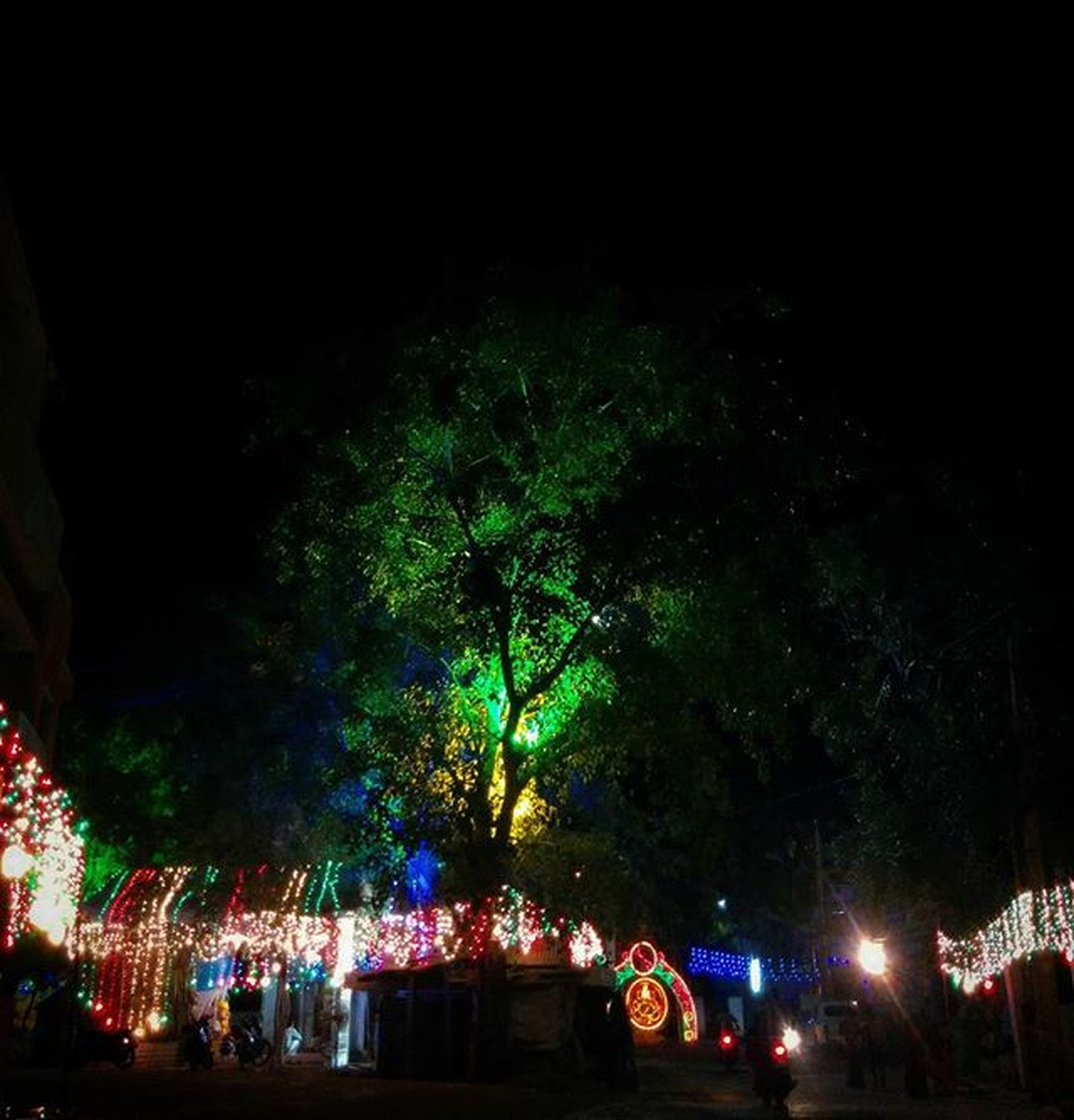 night, illuminated, tree, lighting equipment, street light, low angle view, building exterior, sky, built structure, light - natural phenomenon, outdoors, street, celebration, clear sky, city, dark, incidental people, architecture, large group of people