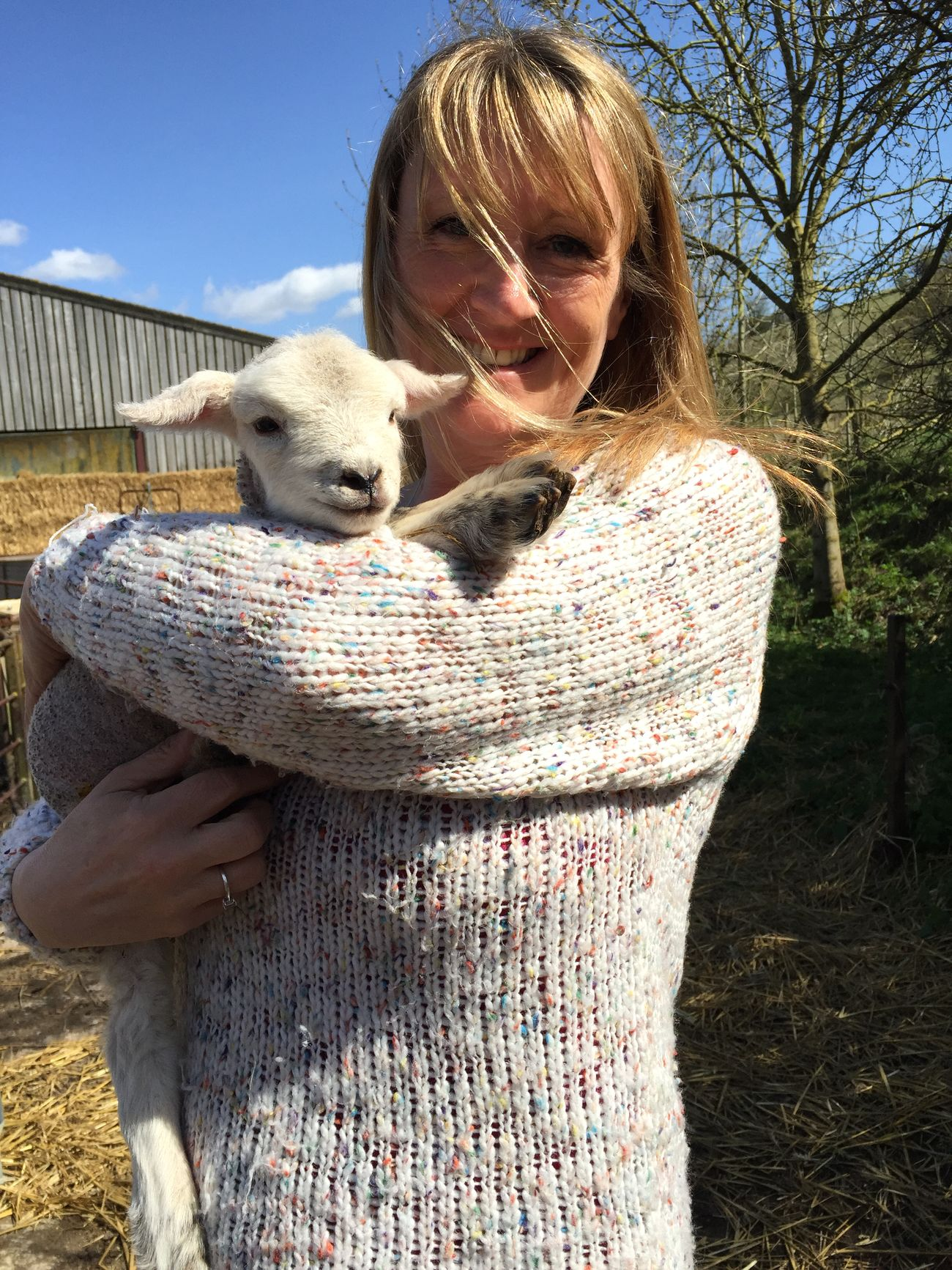 Lamb Farm Sheep Easter Lambing Season Farming Cute Stotfoldlife
