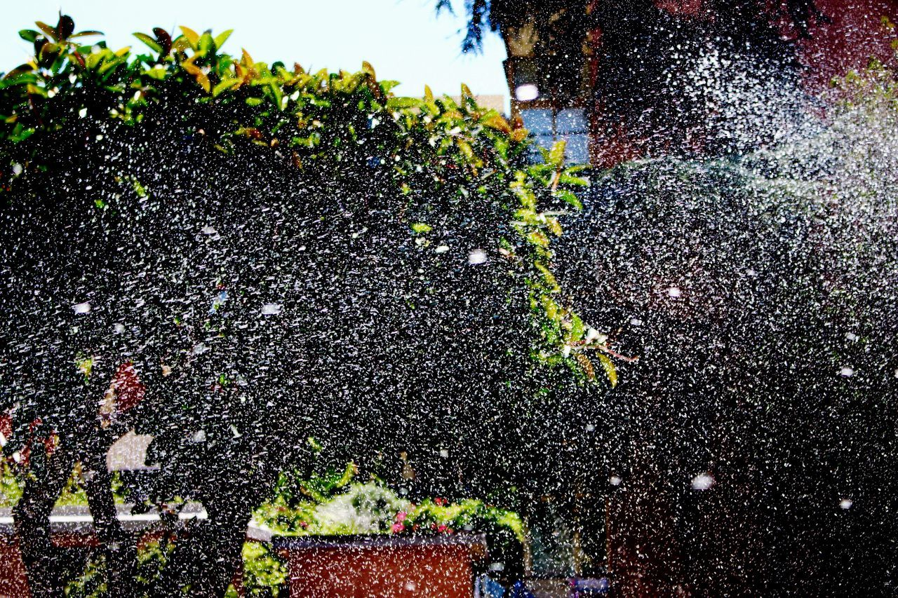 spraying, water, outdoors, splashing, motion, day, tree, growth, real people, nature, sky