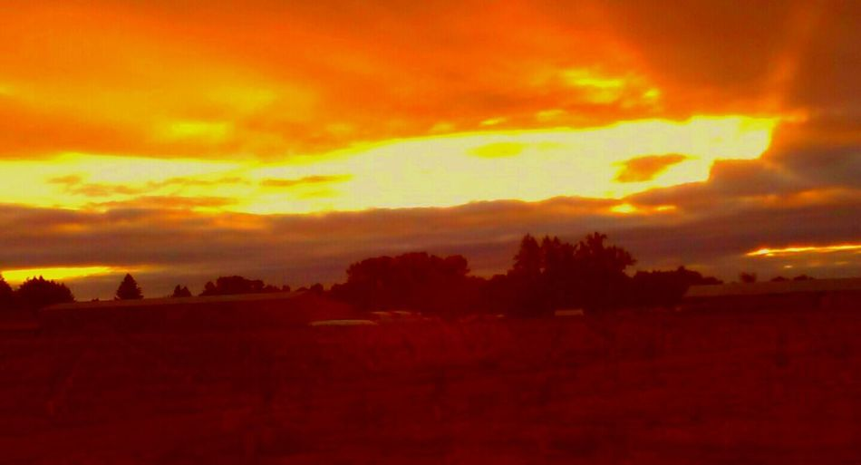 Brilliant Colors Brilliant Sky Orange Atmonsphere Orange Glow Glowing Sky August Morning Whats On The Roll Colour Of Life Color Palette