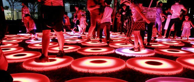 The 2014 iLight festival