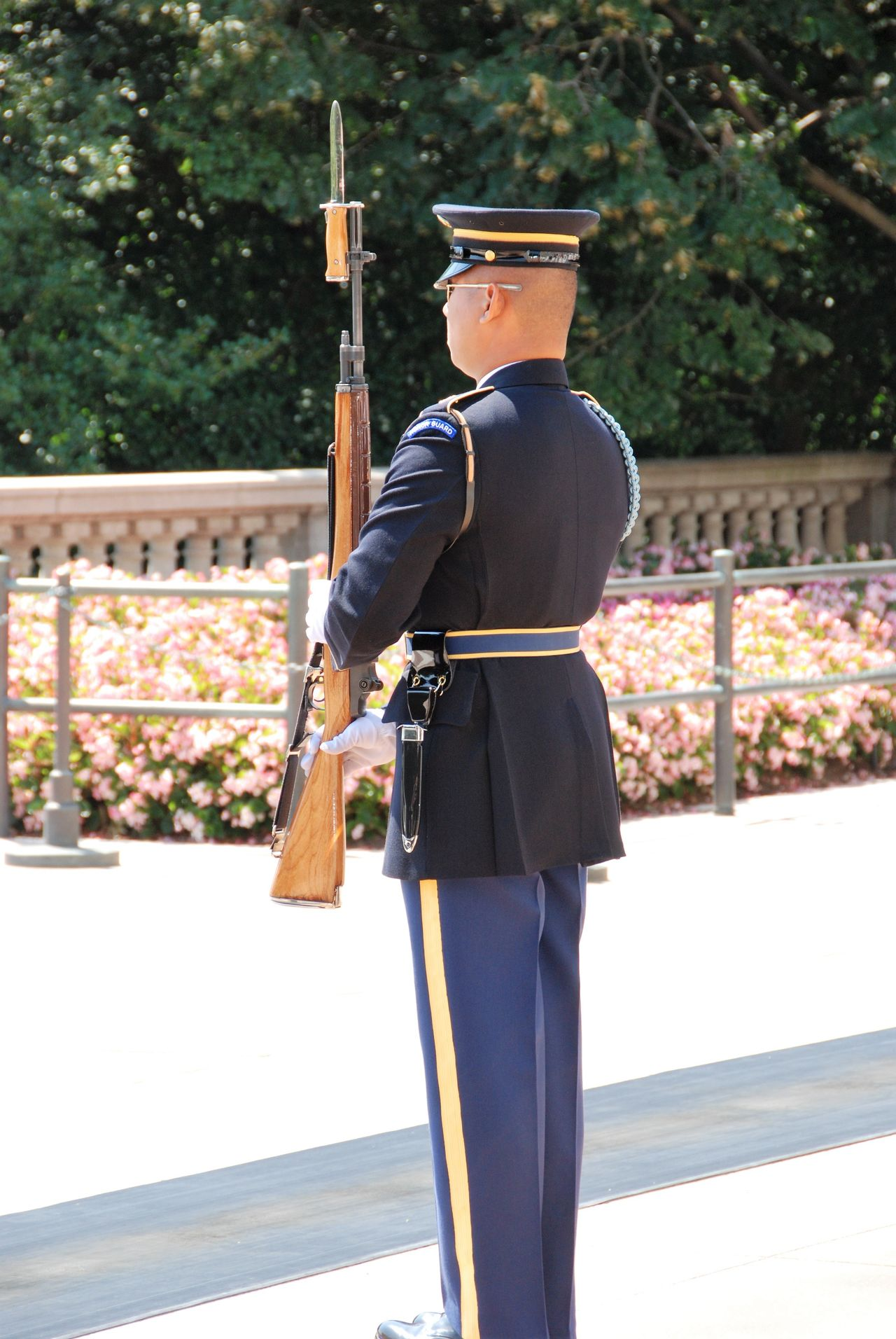 The Guardian of Guardians Adults Only Arlington National Cemetary Holding Honor Military Uniform One Man Only One Person Outdoors Real People Rifle Standing Guard Tomb Of Unknown Soldier