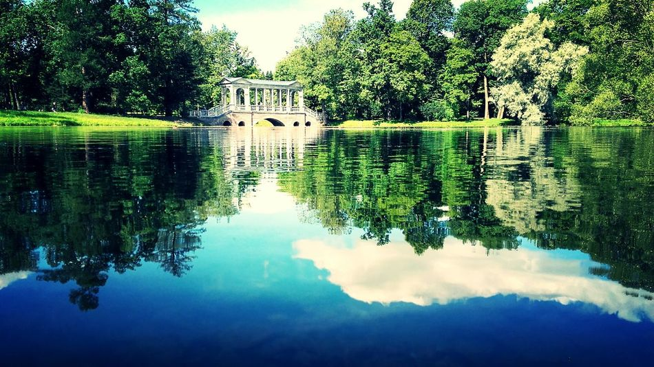 Water Reflection Lake Beauty In Nature Tranquility Sanpietroburgo Tree