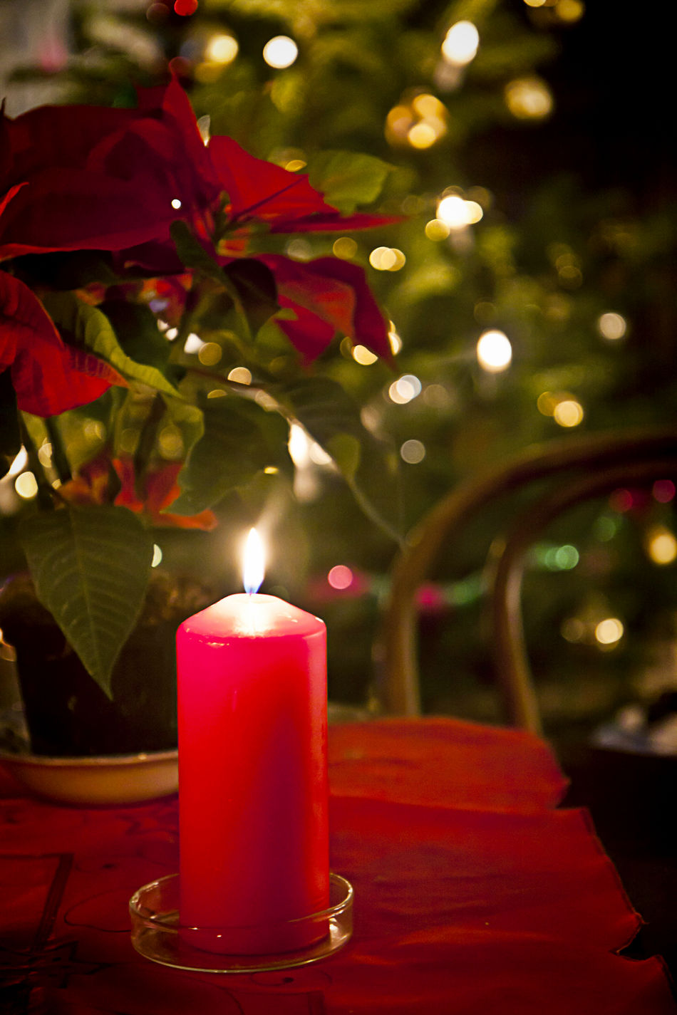 Christmas eve at home, red candle lit and blurred lights in background At Home Christmas Eve Festive Holiday Lights Poinsettia Season  Tradition Traditional