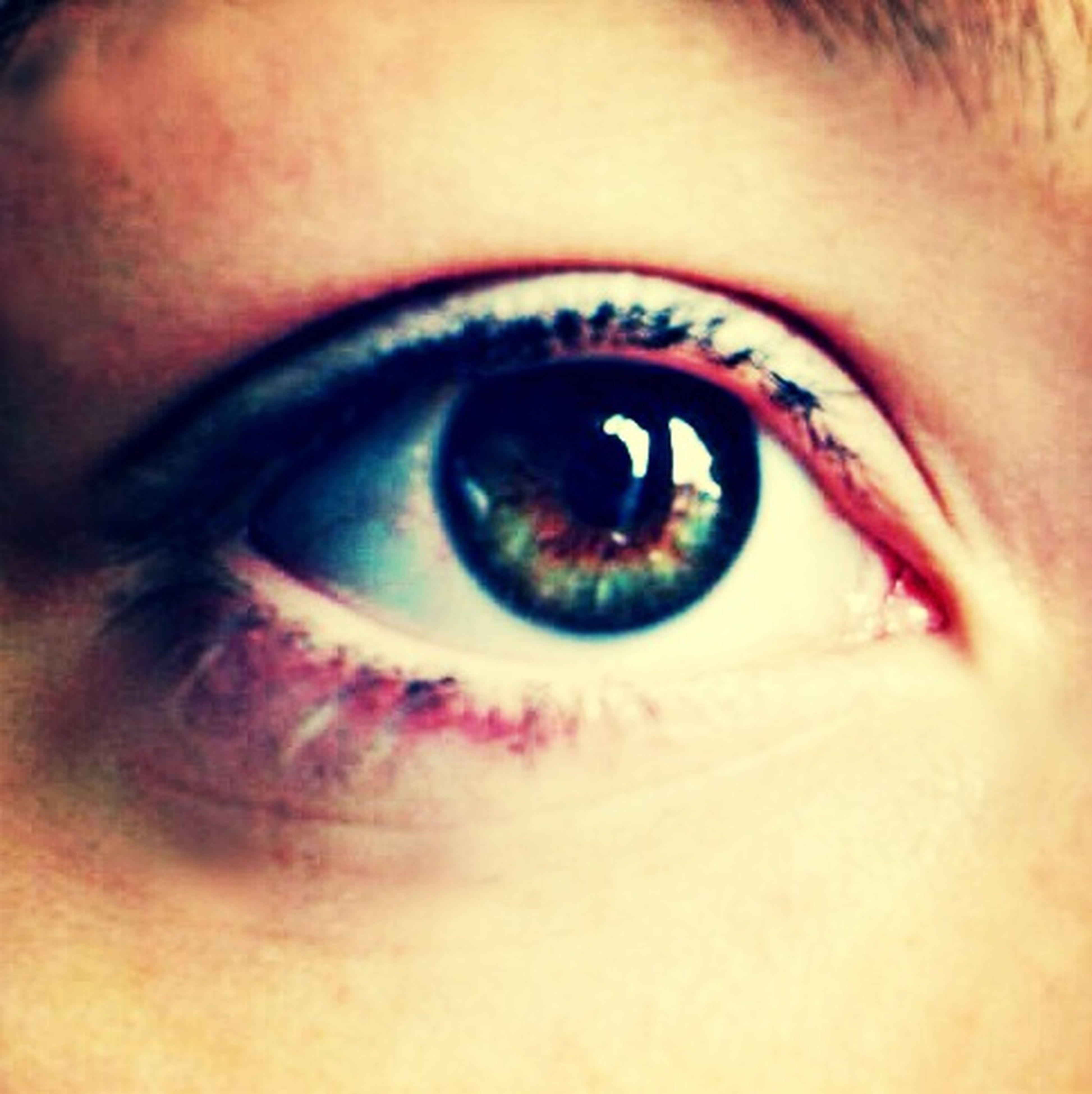 human eye, close-up, eyelash, eyesight, looking at camera, part of, portrait, lifestyles, iris - eye, sensory perception, human face, extreme close-up, eyeball, headshot, indoors, extreme close up, human skin