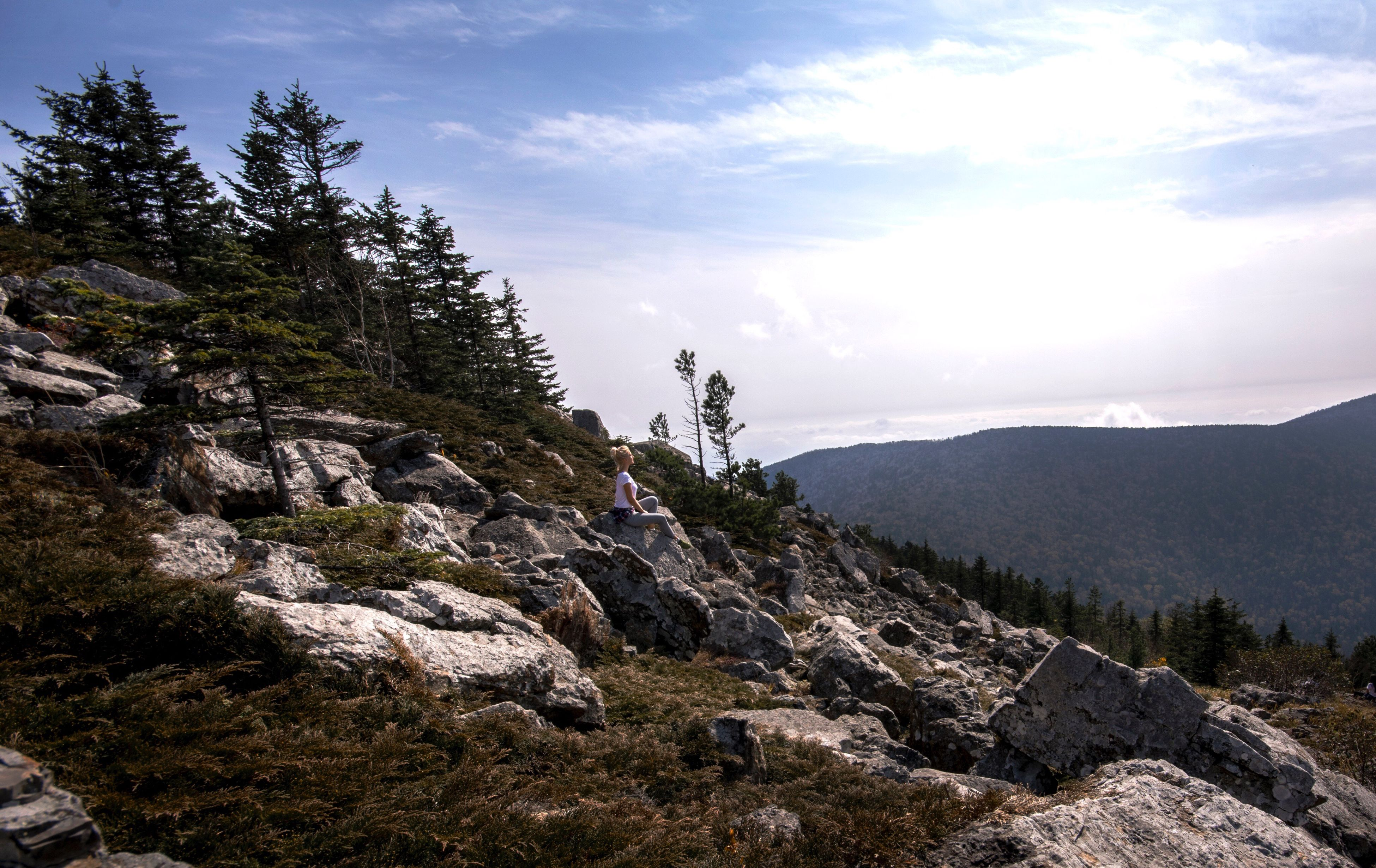 mountain, tranquil scene, tree, scenics, tranquility, non-urban scene, landscape, sky, beauty in nature, nature, mountain range, physical geography, remote, valley, cloud, solitude, cloud - sky, mountain peak, geology, rocky mountains, day, countryside, outdoors, rock formation, green, cliff, pine tree, non urban scene, tourism