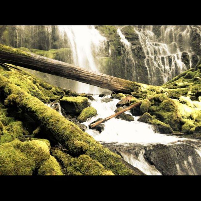 Canon_photos Natgeotravel Greettheoutdoors Naturephotography PNWonderland Discover_pnw Oregonexplored Westcoast_exposures ExploreEverything Exploremore Exploregon @yourbesttravelphotos @thephotosociety Myawaycontest