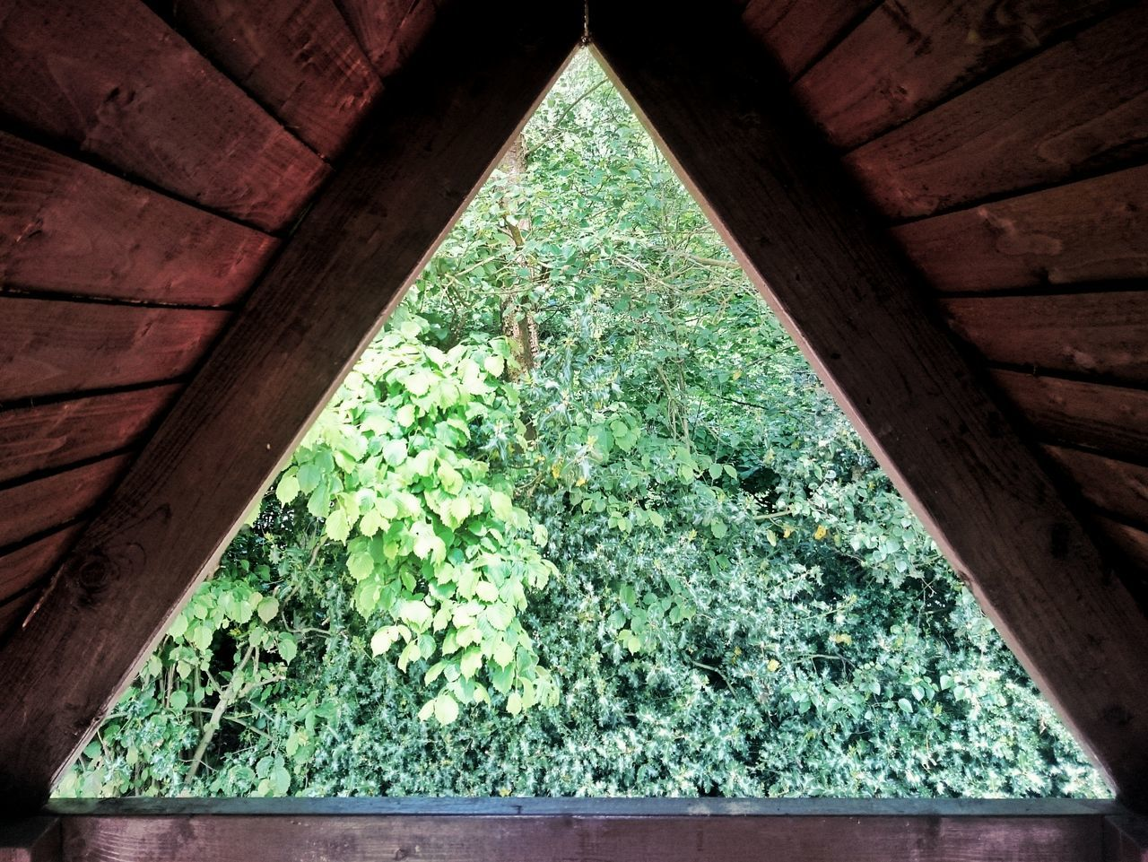Inside Outside // Tree House Looking Out Triangle Trees Taking Photos Full Frame Photo Mike Whitby Stock Image Outdoors Stock Photo No People Eyeem Market EyeEm Best Shots Eye4photography  EyeEm Gallery Wood Play House Play Area Garden Photography Garden Looking EyeEm Nature Lover Play Time Fun
