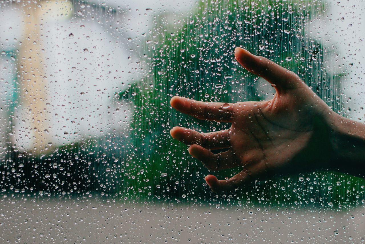 Beautiful stock photos of rain, Close-Up, Day, Drop, Focus On Foreground