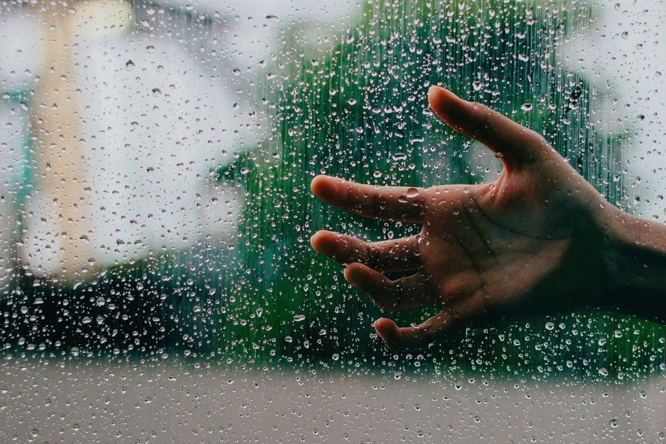 Beautiful stock photos of rain, Close-Up, Day, Drop, Focus On Foreground