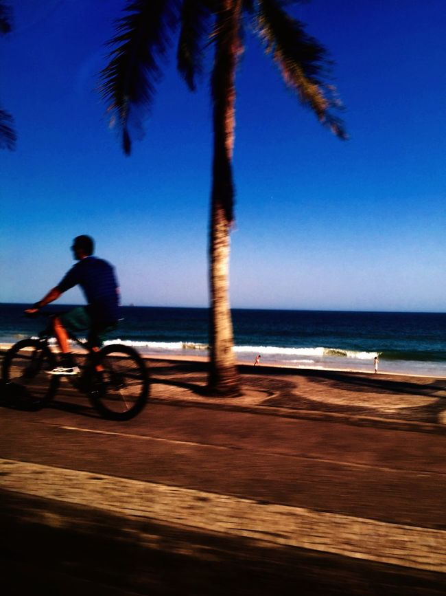 CyclingUnites Sky Sea Horizon Over Water Lifestyles Leisure Activity Palm Tree IPhoneography