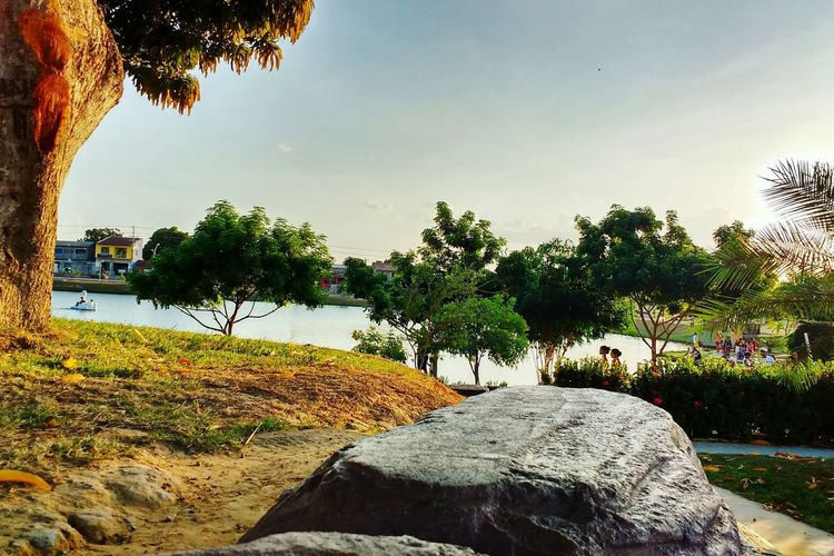 Tree Tranquil Scene Tranquility Lake Water Scenics Growth Sky Nature Plant Day Shore Beauty In Nature Outdoors Solitude Green Color Sea Countryside Non-urban Scene Blue Daylight Praça  Lago Verde Paragominas