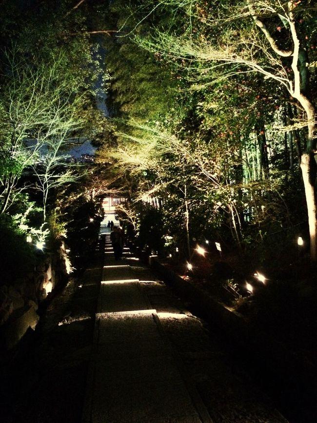 京都いいね