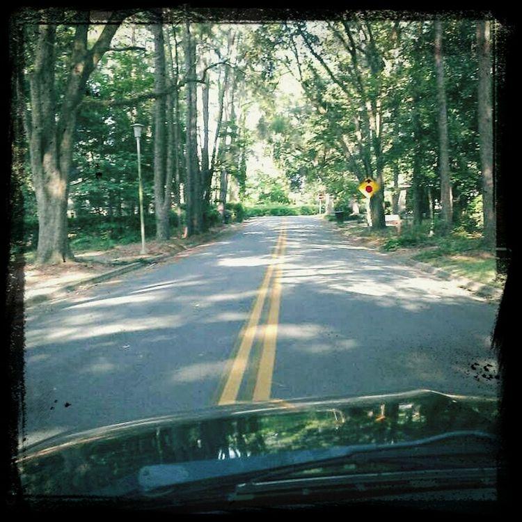 Albany Ga Ridin Round Street Photography