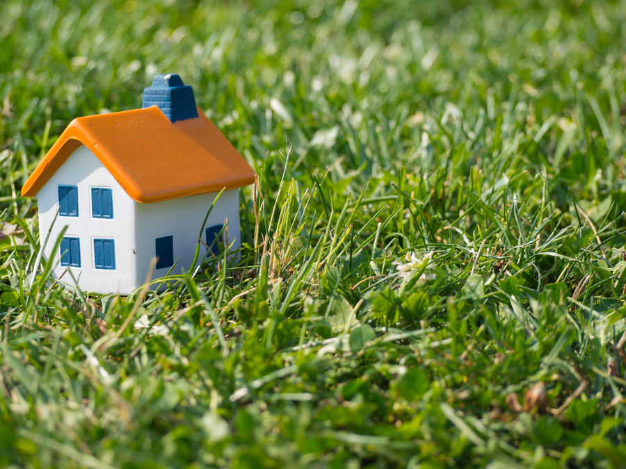 Miniature house on the grass with copy space Architecture Buy Copy Space Dream Finance For Sale Future Grass Green Home House Investment Meadow Miniature Mortgage Moving Nature Outdoors Owner Property Real Estate Real Estate Photography Residence Sell Symbol