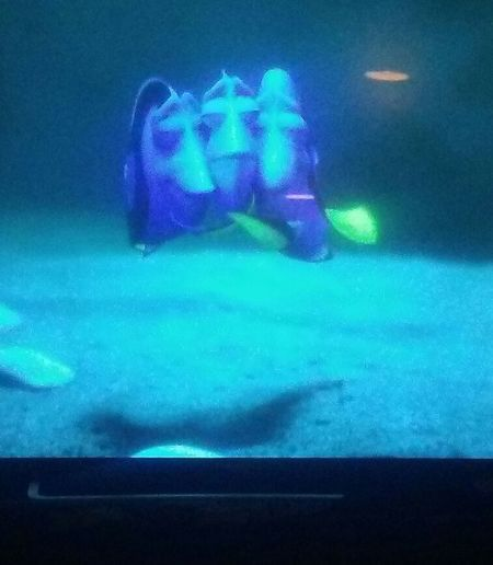 Awwww finding Dory ❤❤❤ Movienight Family Time Cuddle Time With My Boys YOU BLUE ME AWAY...... Blue Technology