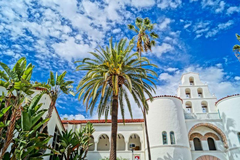 San Diego State University Sdsu University San Diego California Palm Trees Palms HDR Blue Sky Summer USA