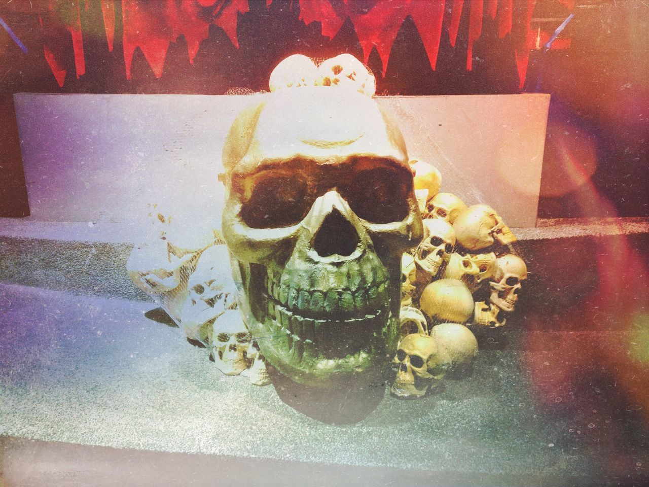 Beautiful stock photos of skull, Counter, Death, Glass - Material, Human Representation