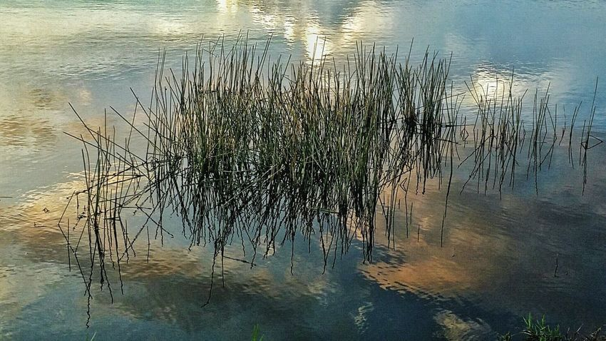 Abstract Photography Art By Nature Reflections And Shadows Beauty In Nature Light And Shadow Twilight Scene My Backyard Canvas Abstract Reflections Amazing Clouds Waterscape Storm Clouds At Sunset Water Reflections Beauty After The Storm Order Out Of Chaos
